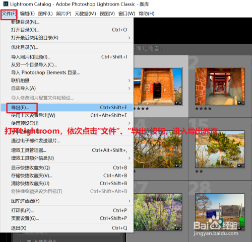 adobe lightroom classic cc如何导出图像1