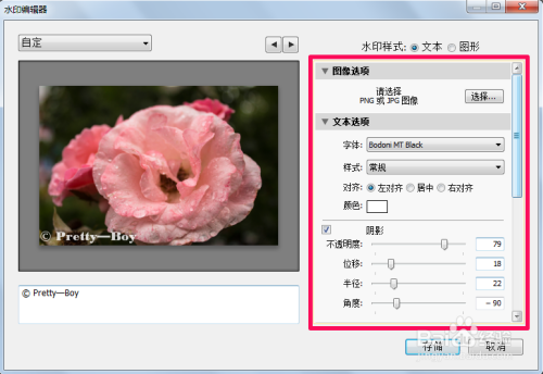 photoshop lightroom破解版如何添加水印5